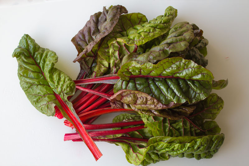 blettes,bettes, spinach beet, acelga
